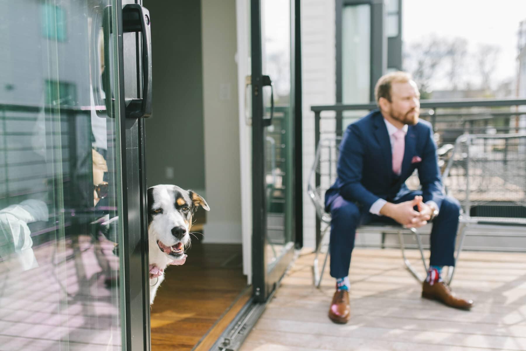 Pet Dog Wedding Party Member | Nashville Bride Guide