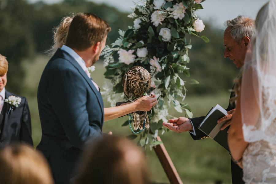Falcon at wedding ceremony